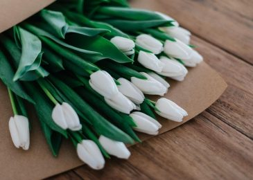 Choose Online Flower Delivery Toronto For Congratulating New Parents!