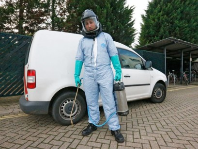 Pest Control Operations Are Required For Preventing Damages And Losses