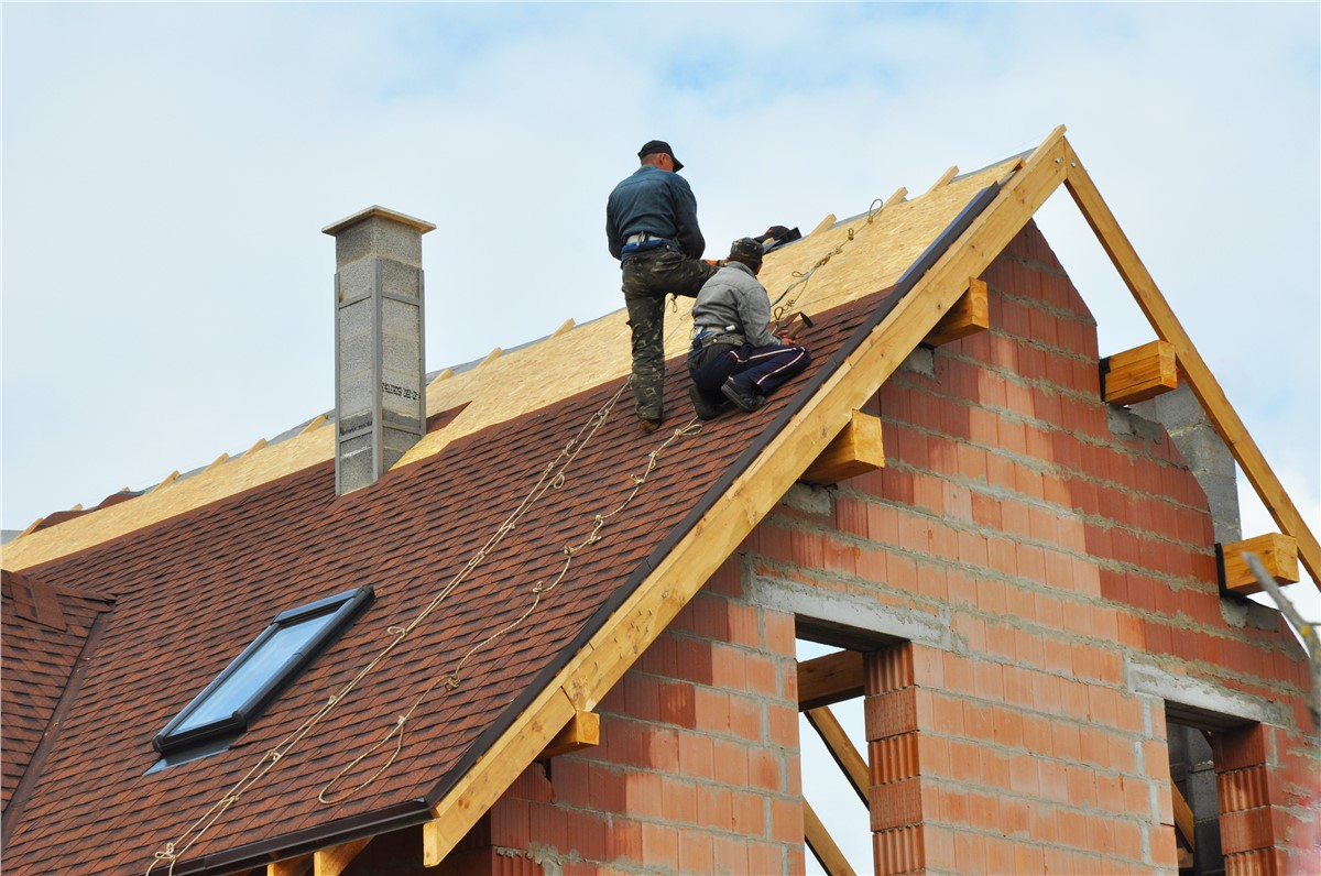 Roofing Ideas 101: Are You Looking For Roof Repair Or Roof Renovation Services?
