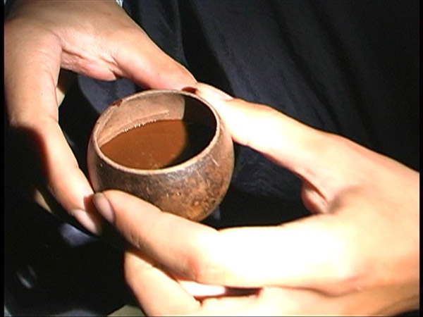 You Might Be Curious but Unaware Of the Different Aspects of an Ayahuasca Ceremony