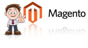 What To Look For In A Magento Developer