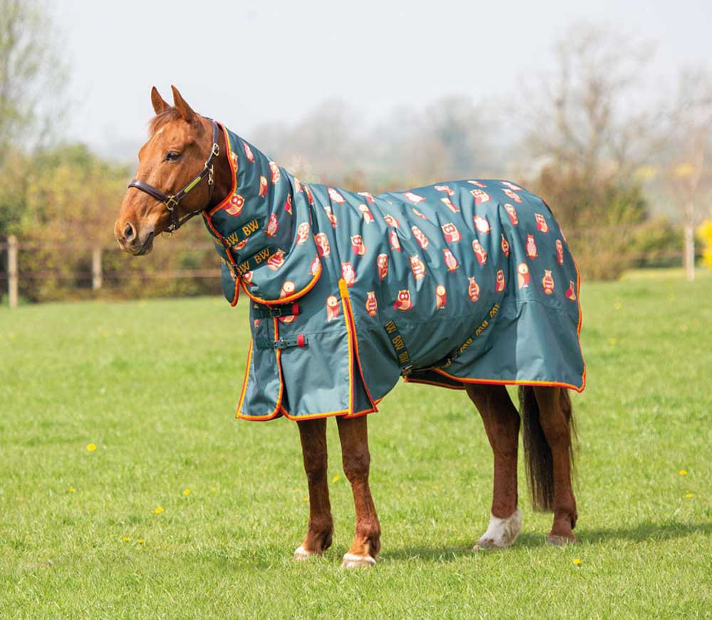 How To Choose The Right Rug For Your Horse
